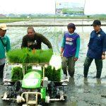 5 Teknologi Andalan yang Bantu Industri Pertanian Indonesia
