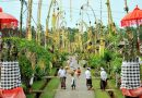 Berkunjung ke Desa Adat Penglipuran Bali, Desa Terbaik Sedunia