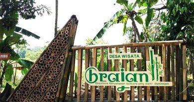 Desa Wisata Brajan kerajinan bambu yang mendunia