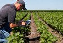 5 Aplikasi Pertanian yang Harus Kamu Tahu
